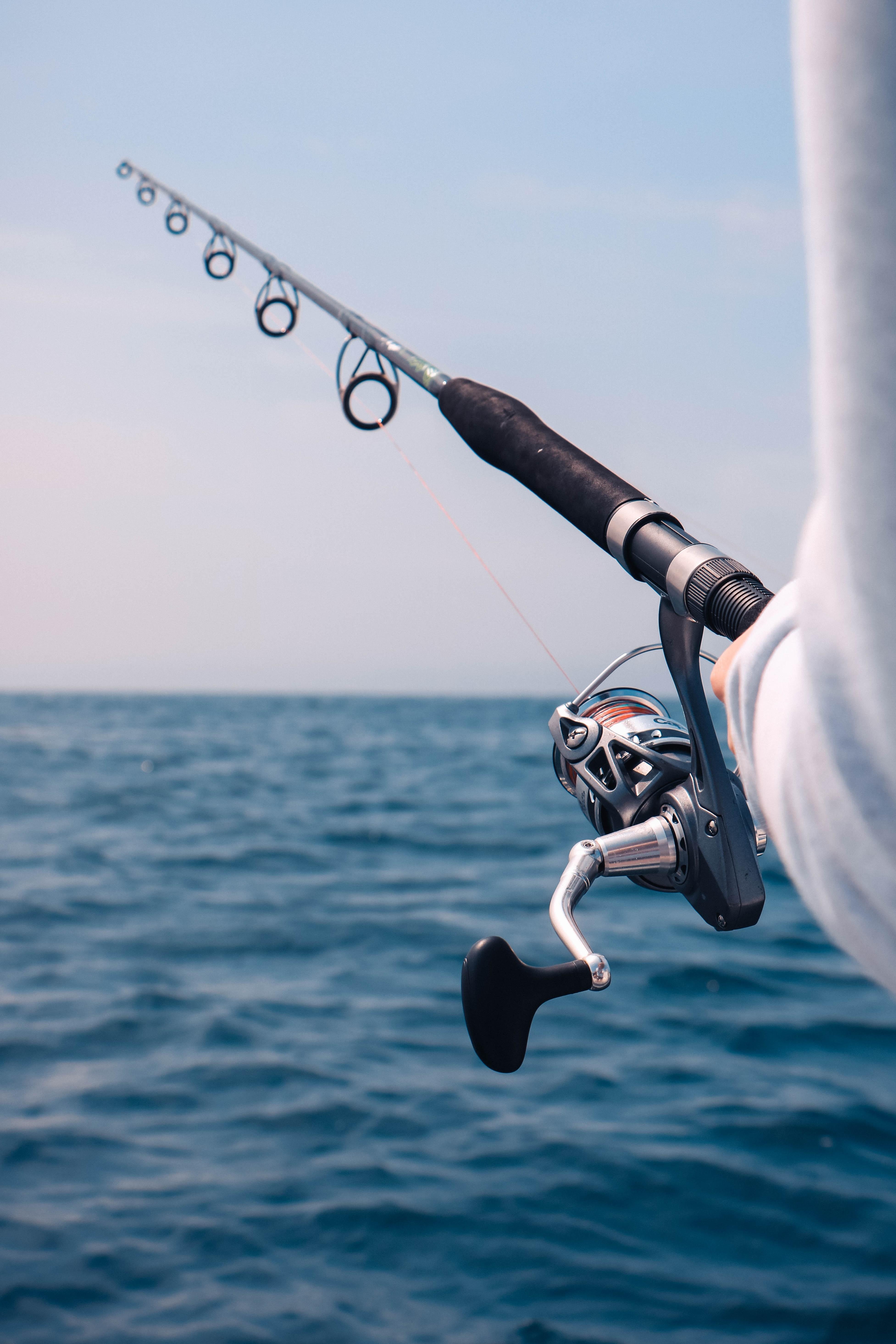 Der Köder muss dem Fisch schmecken - Erfolgreiche Gewinnung von Ehrenamtlichen