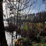 Schweigen und Fasten - eine Meditationswoche im Kloster Lehnin
