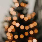 »Seht, die gute Zeit ist nah« - Homiletische Weihnachtswerkstatt mit der Autorin Susanne Niemeyer