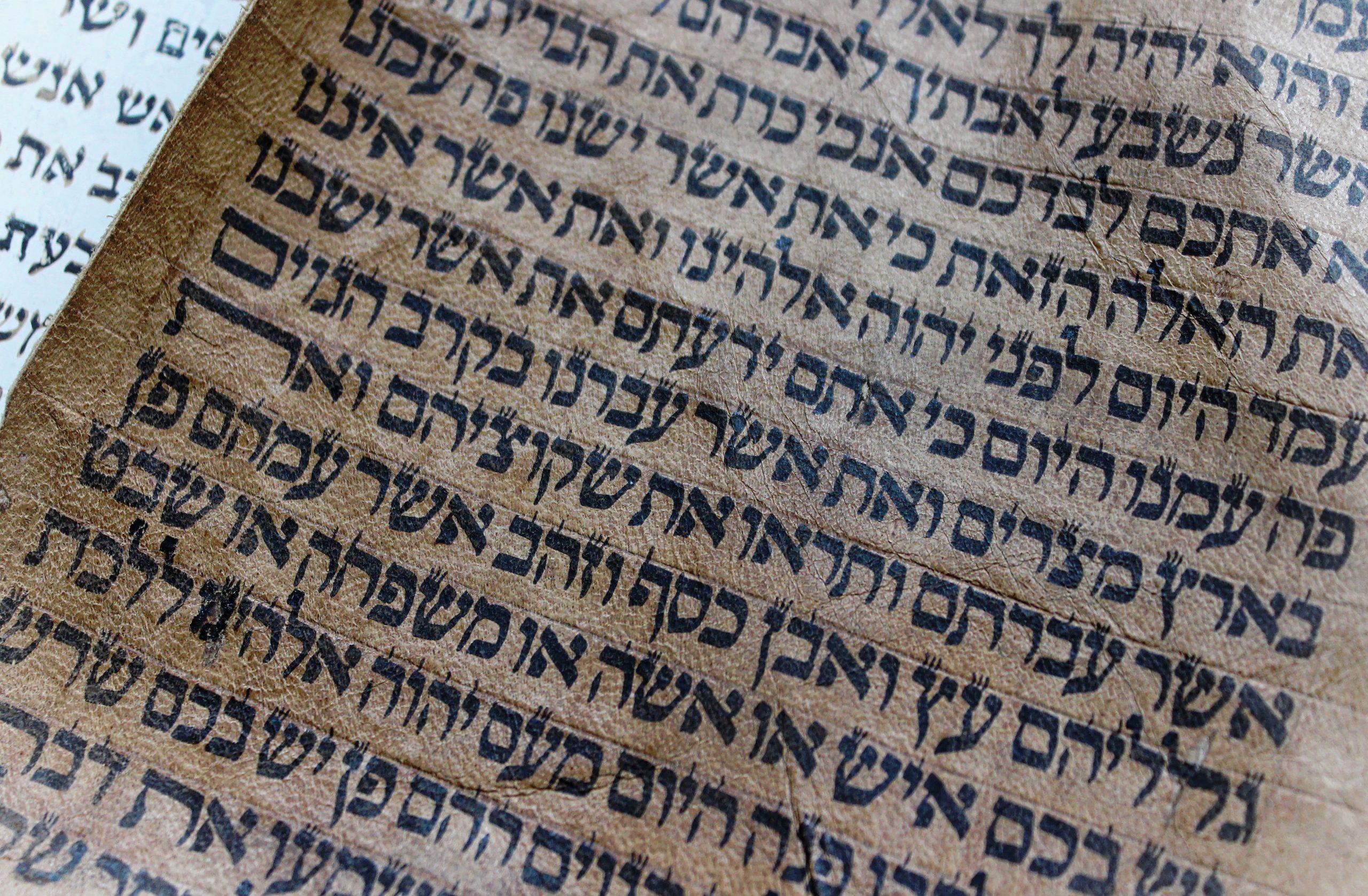 Zeit für den Text - Die alttestamentlichen Predigtperikopen übersetzen und auslegen